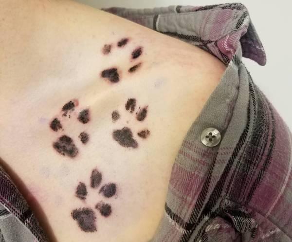 Tatuaż łapki Znaczenie Historia 30 Zdjęć