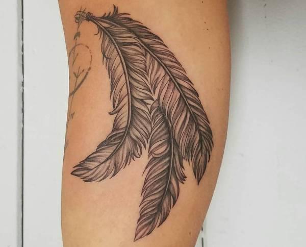 Znaczenie tatuaży Zwierzęta  Tatuaż piórko – znaczenie, 24 inspirujących wzorów