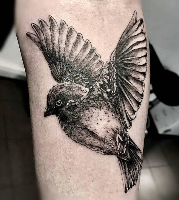 Znaczenie tatuaży Zwierzęta  Tatuaż wróbel - znaczenie, historia, 20 zdjęć