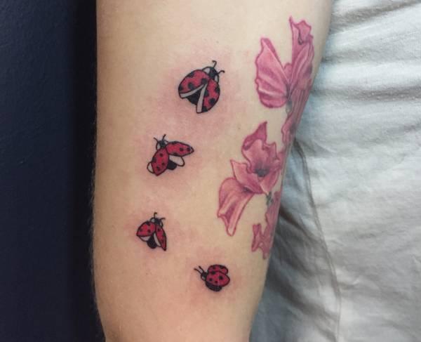Znaczenie tatuaży Zwierzęta  Tatuaż biedronka – znaczenie, historia, 19 zdjęć