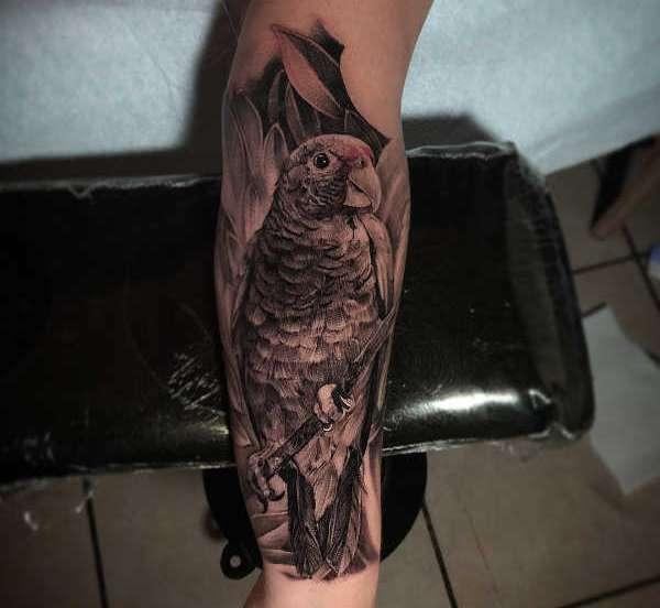 Znaczenie tatuaży Zwierzęta  Tatuaż papuga – znaczenie, historia, 30 zdjęć