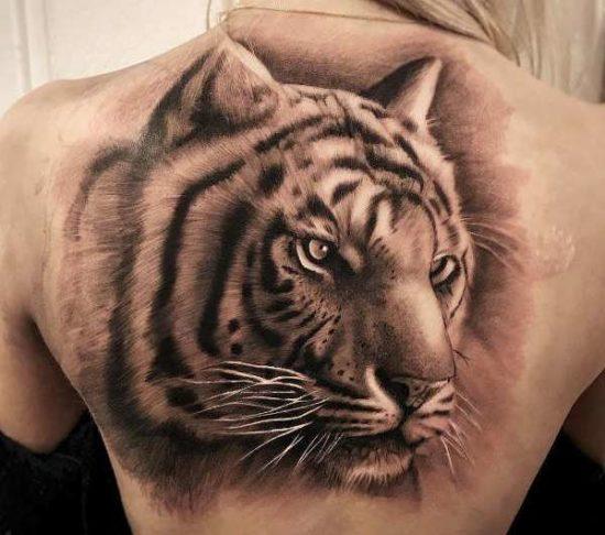 Tatuaż Tygrys Znaczenie Historia 40 Zdjęć