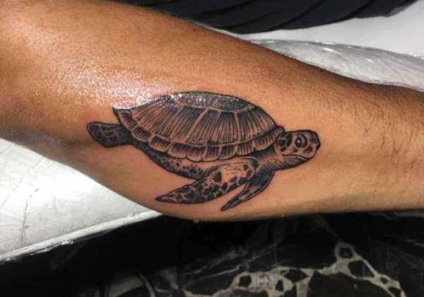 Znaczenie tatuaży Zwierzęta  Tatuaż żółw – znaczenie, symbolika, 30 zdjęć